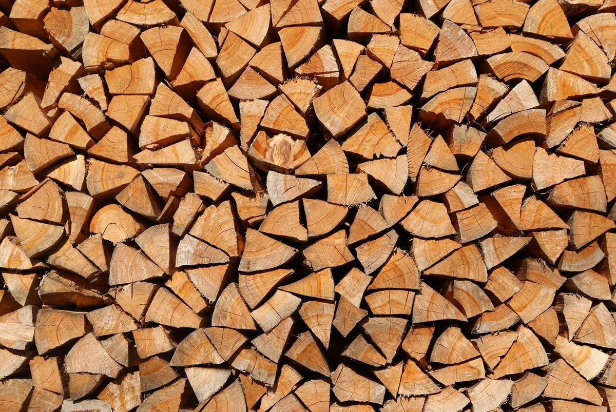 TDS FOREST 木質バイオマス燃料の創出